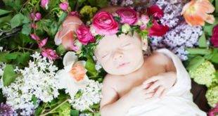 Flower Names For Boys and Girls